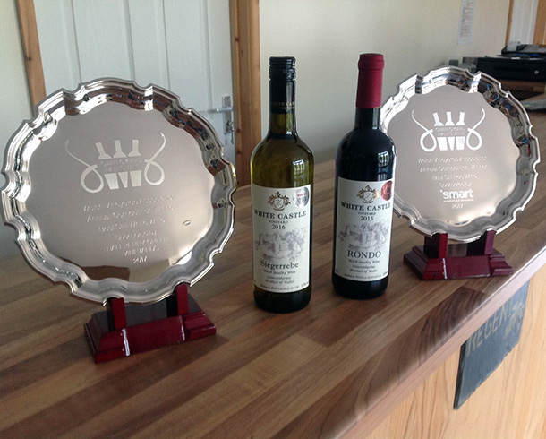 Trio of awards at The Welsh Vineyards Association Annual Competition